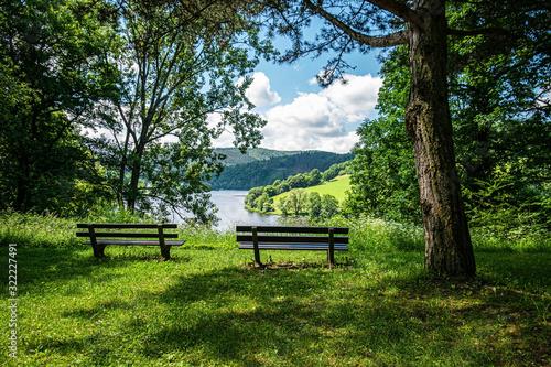 Fotografija two empty benches in the park