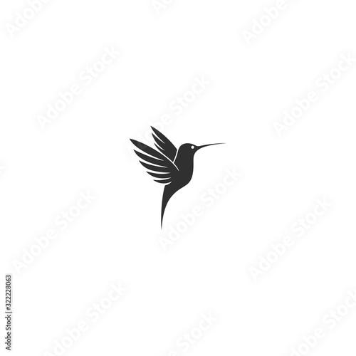 Fotografia vector illustration of hummingbird