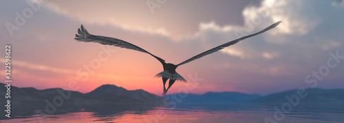Canvas Eagle flying flush with water