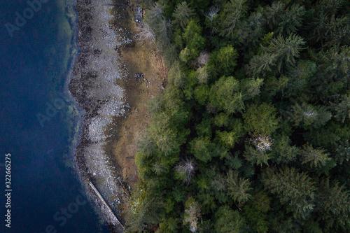 birds eye view of the rainforest Fototapete