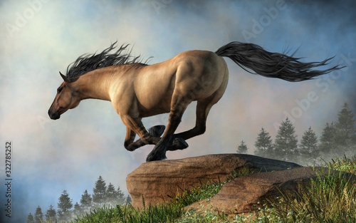 Wallpaper Mural A grulla coated horse gallops over rocky green hills through the springtime morning mists
