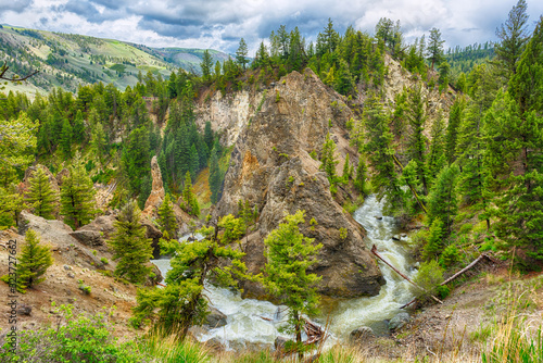 Canvas-taulu River in a green canyon in Yellowstone