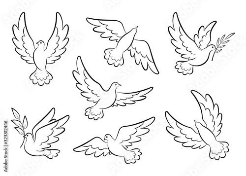 Flying dove sketch vector set Fototapet