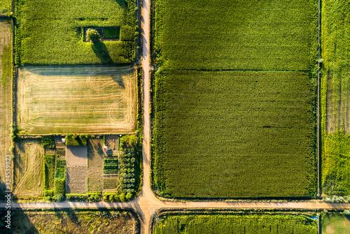 Fotografija irrigated corn agriculture aerial landscape