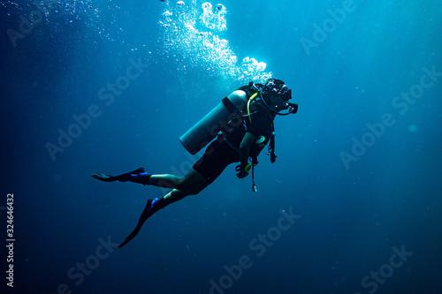 Fotografie, Tablou Scuba diving safety stop
