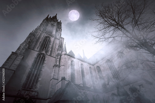 Fotografía Old gothic Church with Moonlight and foggy Night in Frankfurt in Germany