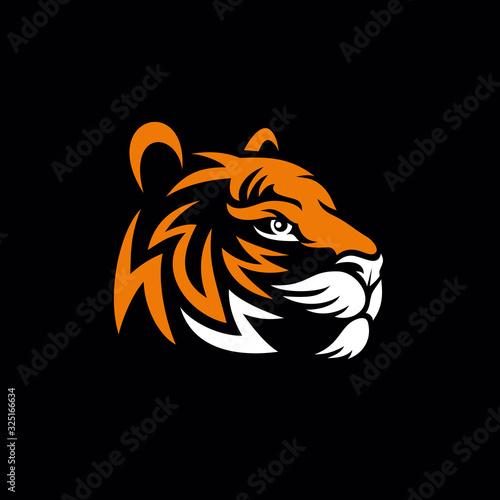 Vector tiger head Fototapet