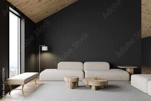 Grey attic living room interior with sofa
