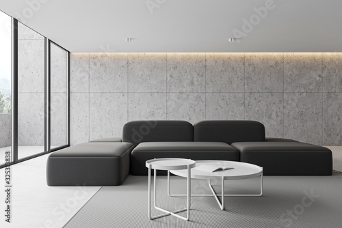 Fényképezés Minimalistic living room interior with sofa