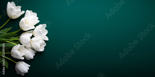White tulips on green background top view. Happy spring Holidays. Valentine's day. Birthday. Women's day. Easter. Flower wedding card, invitation, banner #326193616