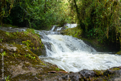 Lots of Vegetation, Plants, Moss on the Rocks at Waterfalls near to the Splendors Cave in Antioquia, Colombia