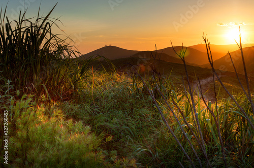 Canvastavla Golden Sunset over Ventura Hillsides with Two Trees