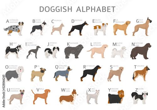 Vászonkép Doggish alphabet for dog lovers