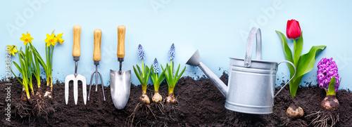 Fotografia, Obraz Gardening Tools and Plants
