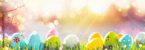 Easter Eggs With Fresh Green Grass and Sun