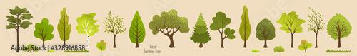 Summer trees, bush, grass. Set of green plants. Elements for vector flat design. Landscape. Nature