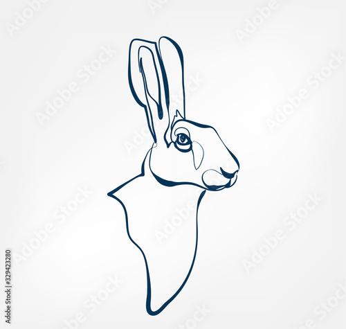 Fotografia, Obraz hare vector animal wild one line design