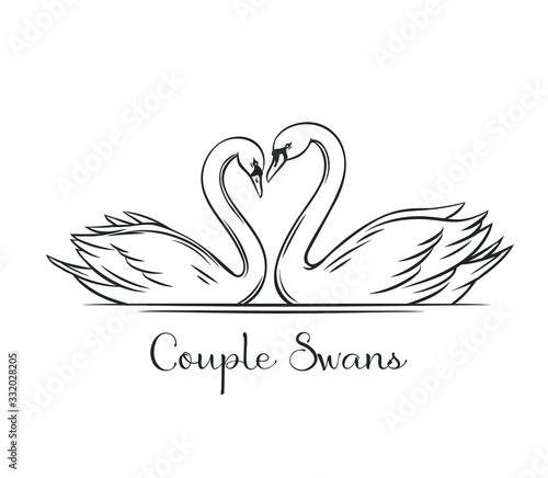 Fotografie, Obraz Couple swans outline.
