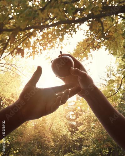 Billede på lærred Adam and Eve Forbidden Fruit in Garden of Eden