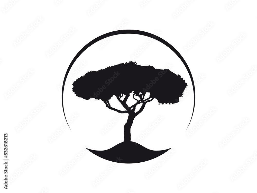 Vektor Logo Icon Pinus Pinea Kiefer Schirmkiefer, auch Mittelmeer-Kiefer genannt <span>plik: #332618213   autor: Wilm Ihlenfeld</span>
