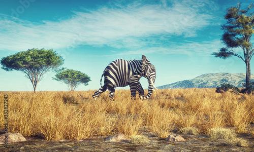 Obraz na płótnie Elephant zebra different