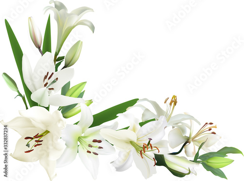 Stampa su Tela corner from light color lily flowers on white