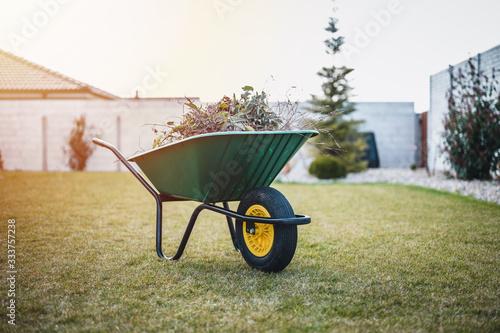 Green wheelbarrow in the garden Fototapete