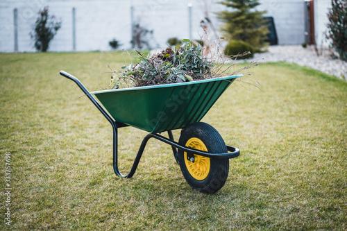 Green wheelbarrow in the garden Fototapet