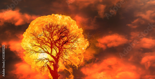 Photo Burning Tree on fire at day with stormy sky and lightning