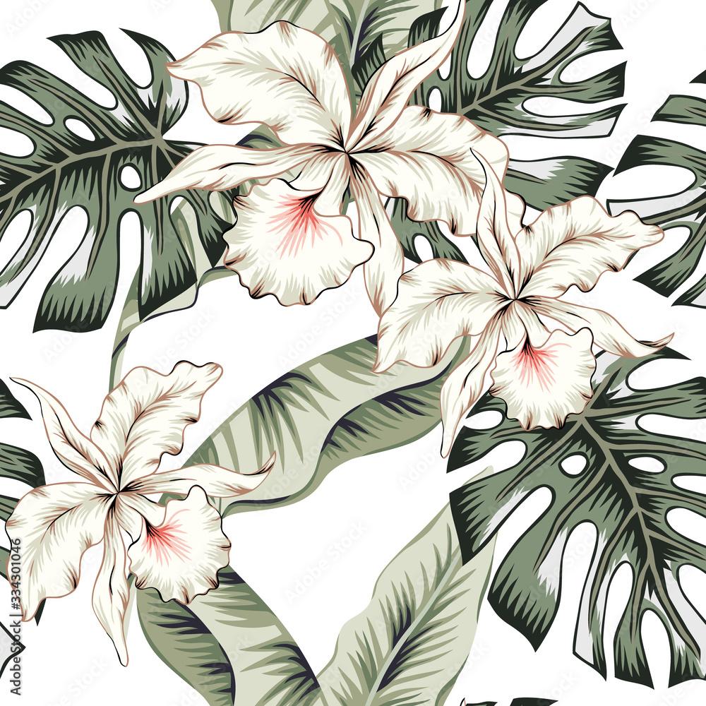 Fototapeta Tropikalne białe kwiaty orchidei, zielony