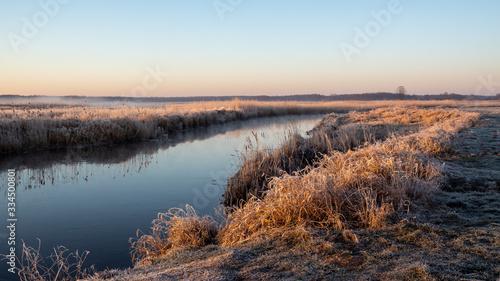 Poranek w Narwiańskim Parku Narodowym. Rzeka Narew. Polska Amazonia. Podlasie. Polska