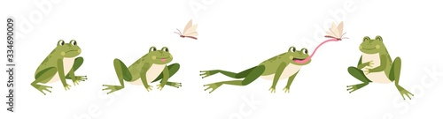 Fotografie, Obraz Set of cartoon hungry frog sad, smile, resting and hunting isolated on white background