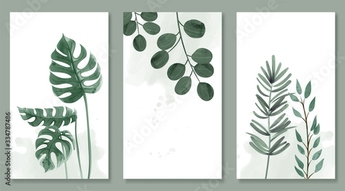 Fotografia Set of botanic and wild leaves in watercolor painting