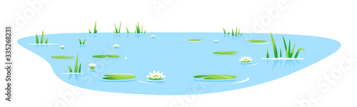 Stampa su Tela Small blue decorative pond with bulrush plants and white water lilies isolated,