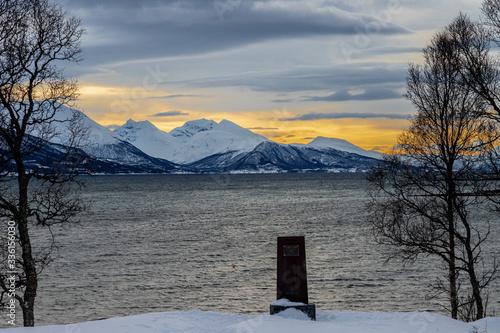 Canvas Print stele affiorante dalla neve in riva al fiordo norvegese