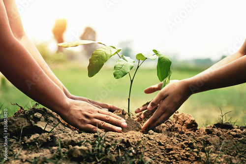 mother with children helping planting tree in nature for save earth. environment eco concept