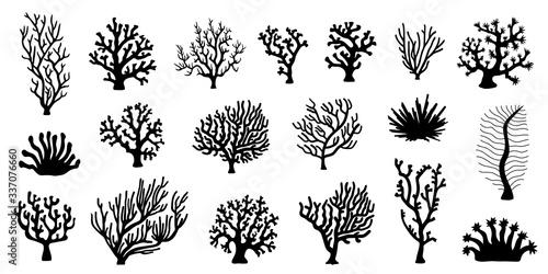 Wallpaper Mural various coral silhouette