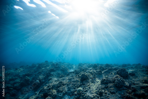 Photo View of coral reef underwater