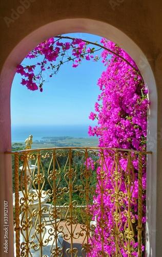 Cuadros en Lienzo Fresh Pink Bougainvillea Flowers By Balcony