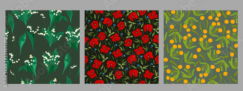 Fotografia Set of floral seamless patterns with dandelions, poppies and lilies of the valley