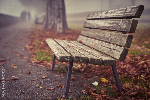 Close-up Of Empty Bench In Park Fototapet