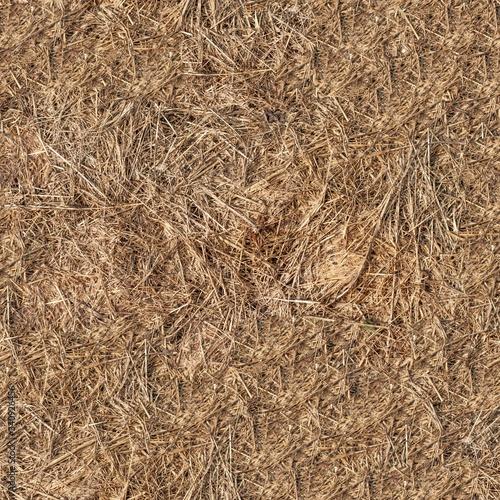 Valokuvatapetti Seamless dry grass hay texture
