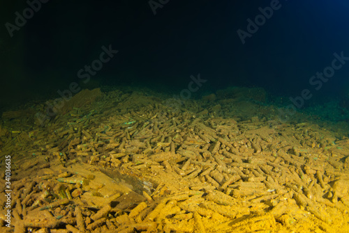 Foto bullets lie around the floor of a sunken ship as they were once its cargo