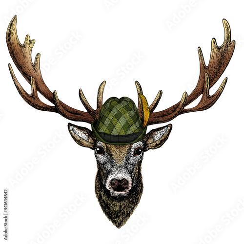 Deer portrait Fototapete