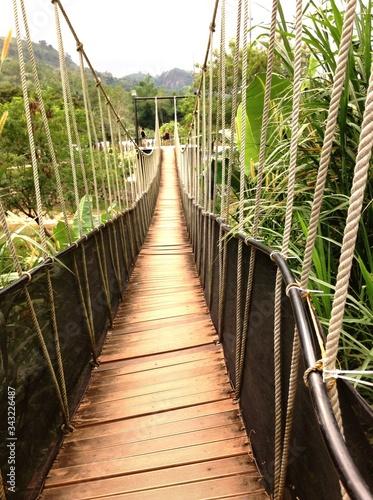 Fotografie, Tablou Empty Footbridge Amidst Trees