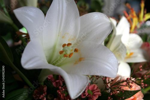 Valokuvatapetti Liliens in einem Straußarrangement