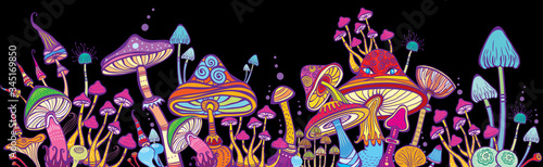 Fotografia Horizontal banner Groups of decorative mushrooms