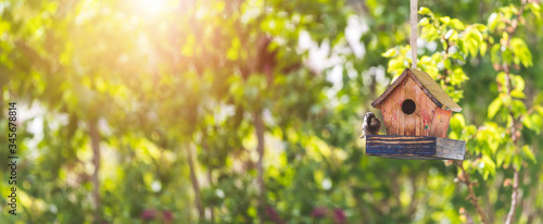 Fotografering Colorful birdhouse in idyllic garden: Wooden birdhouse and copy space