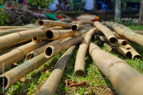 Fotomural Bamboos On Field
