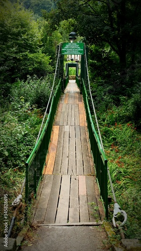 Canvas Print Footbridge Amidst Trees At Park